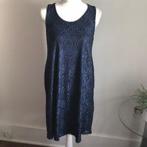 Pinkblush Maternity Navy Blue Lace Dress